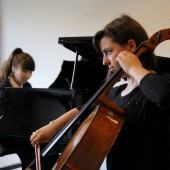 Looking for a chamber music partner ?