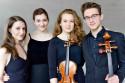 Quatuor Javus