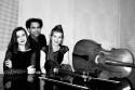 Trio Aralia